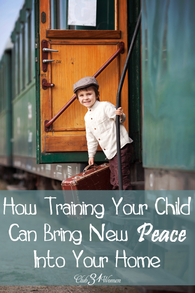How Training Can Bring New Peace Into Your Home