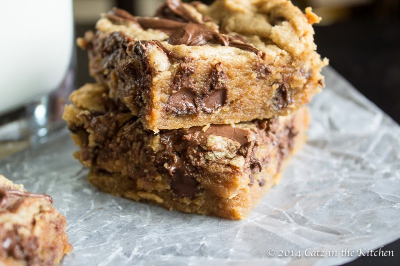 PEANUT BUTTER AND CHOCOLATE CHIP NUTELLA SWIRLED BLONDIES