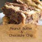 Yummy! Peanut Butter and Chocolate Chip Nutella Swirled Blondies