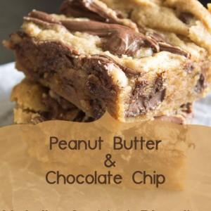 Yum! Peanutbutter and Chocolate Chip Nutella Swirled Blondies
