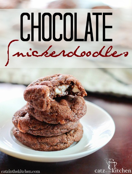 Chocolate Snickerdoodles with White Chocolate Chips {& the Gift of Encouragement}