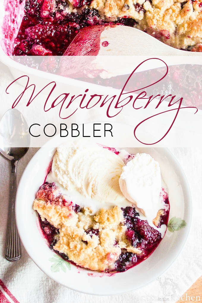 You Can't Go Wrong with A Simple Berry Cobbler