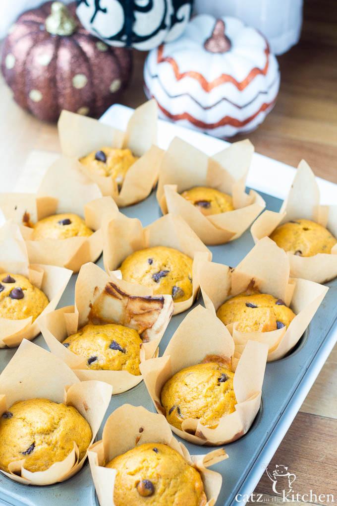 Pumpkin Muffins by Catz in the Kitchen