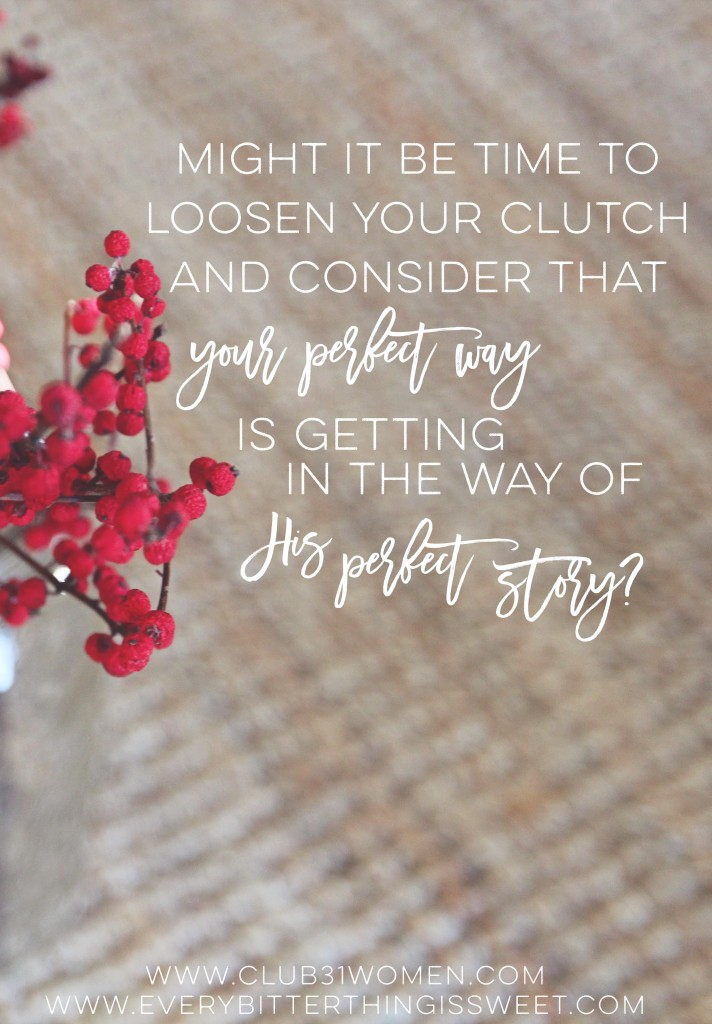 Is Your Perfect Way Getting in the Way of HIS Perfect Story