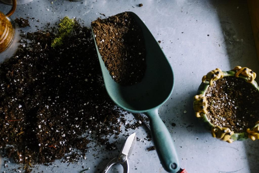 Spring Date Ideas - Plant a Garden