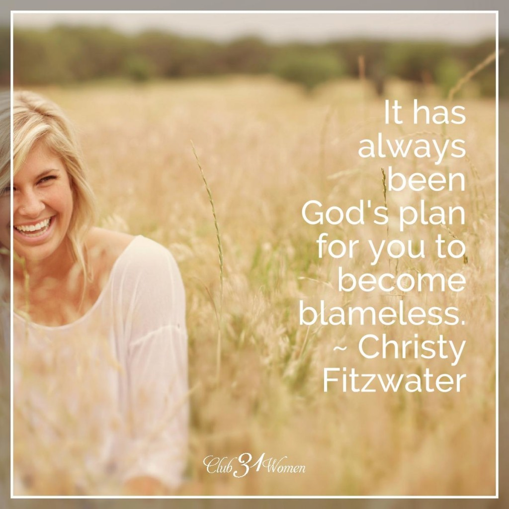 Blameless by Christy Fitzwater 5
