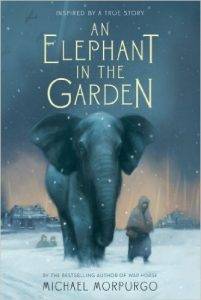 elephant-in-the-garden