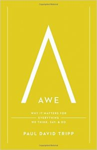 awe-why-it-matters-for-everything-we-think-say-and-do