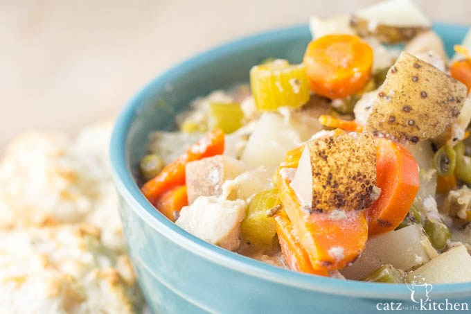 In need of some crockpot comfort food? This slow cooker creamy chicken stew recipe will fit the bill!