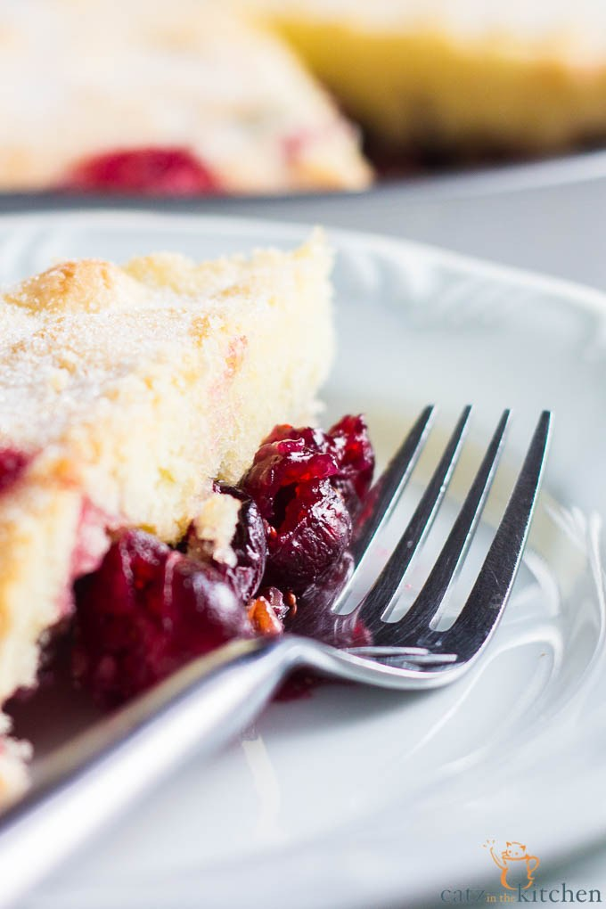 nantucket-cranberry-pie-7