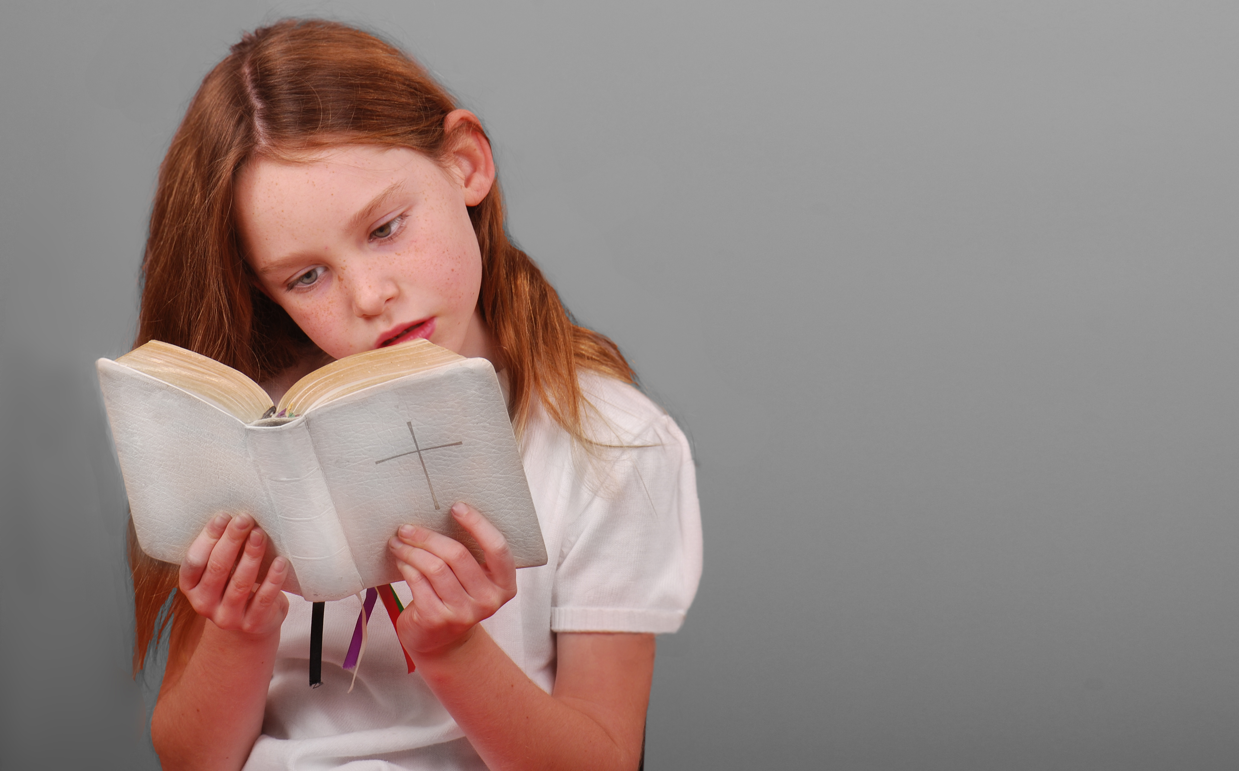 A Collection of Favorite Children's Bibles