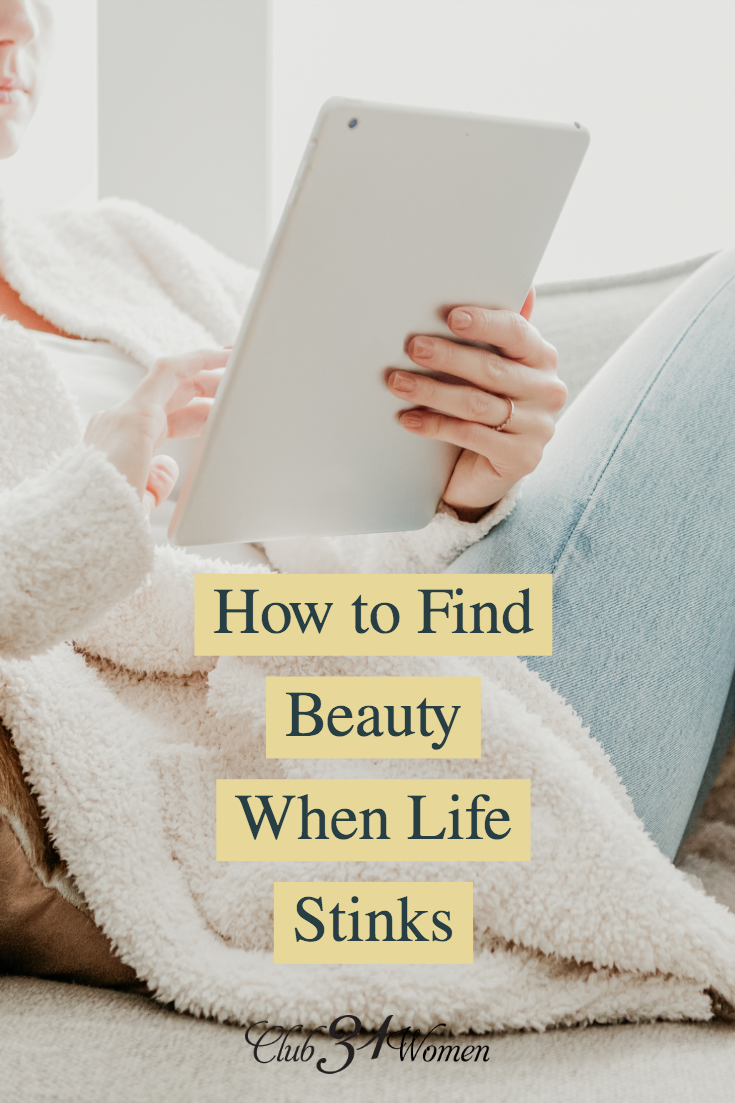 It can be so difficult to find beauty in the midst of pain and when life gets hard. How can we focus our thoughts on the lovely and goodness of God? via @Club31Women